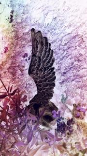 Diana-Anderegg-Engel im Garten - 20 x 30